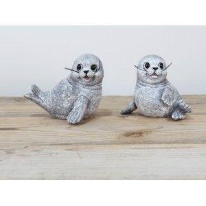 Zeehond vrolijk grijs