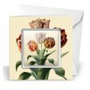 Giftcard Botanical Tullips magneet acryl