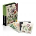 Postkaartenbox Rijksmuseum Botanische Prenten